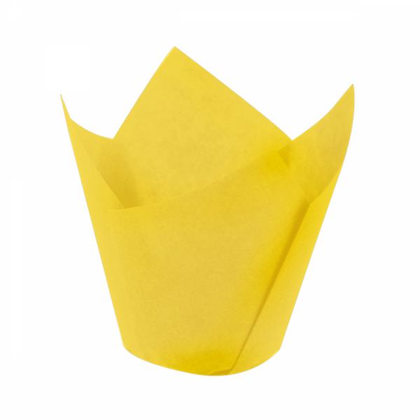 Tulip Sarı