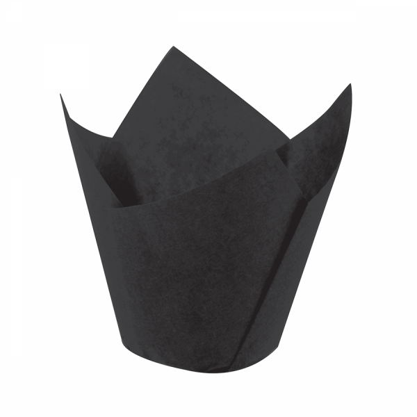 Tulip Siyah