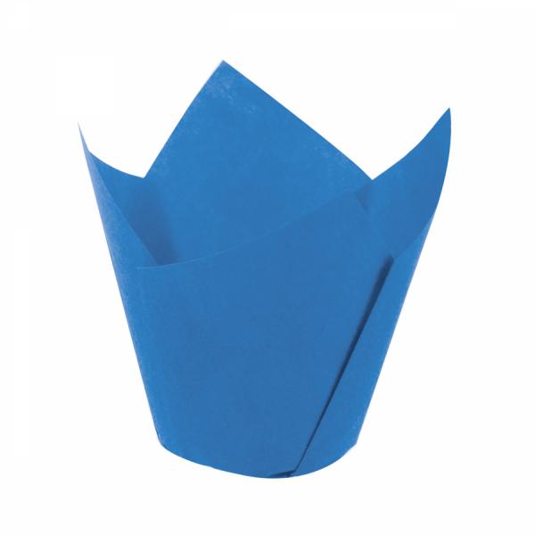 Tulip Mavi