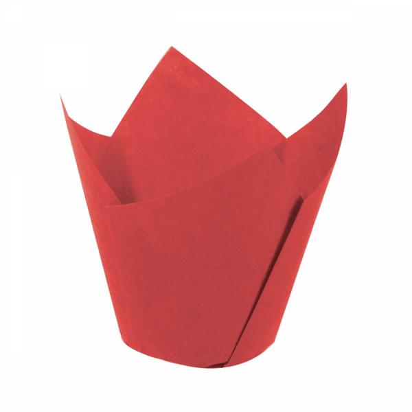 Tulip Kırmızı