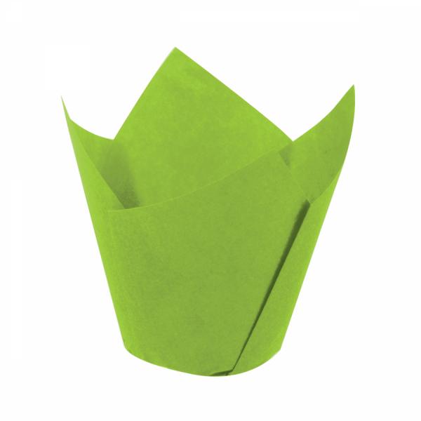 Tulip Yeşil